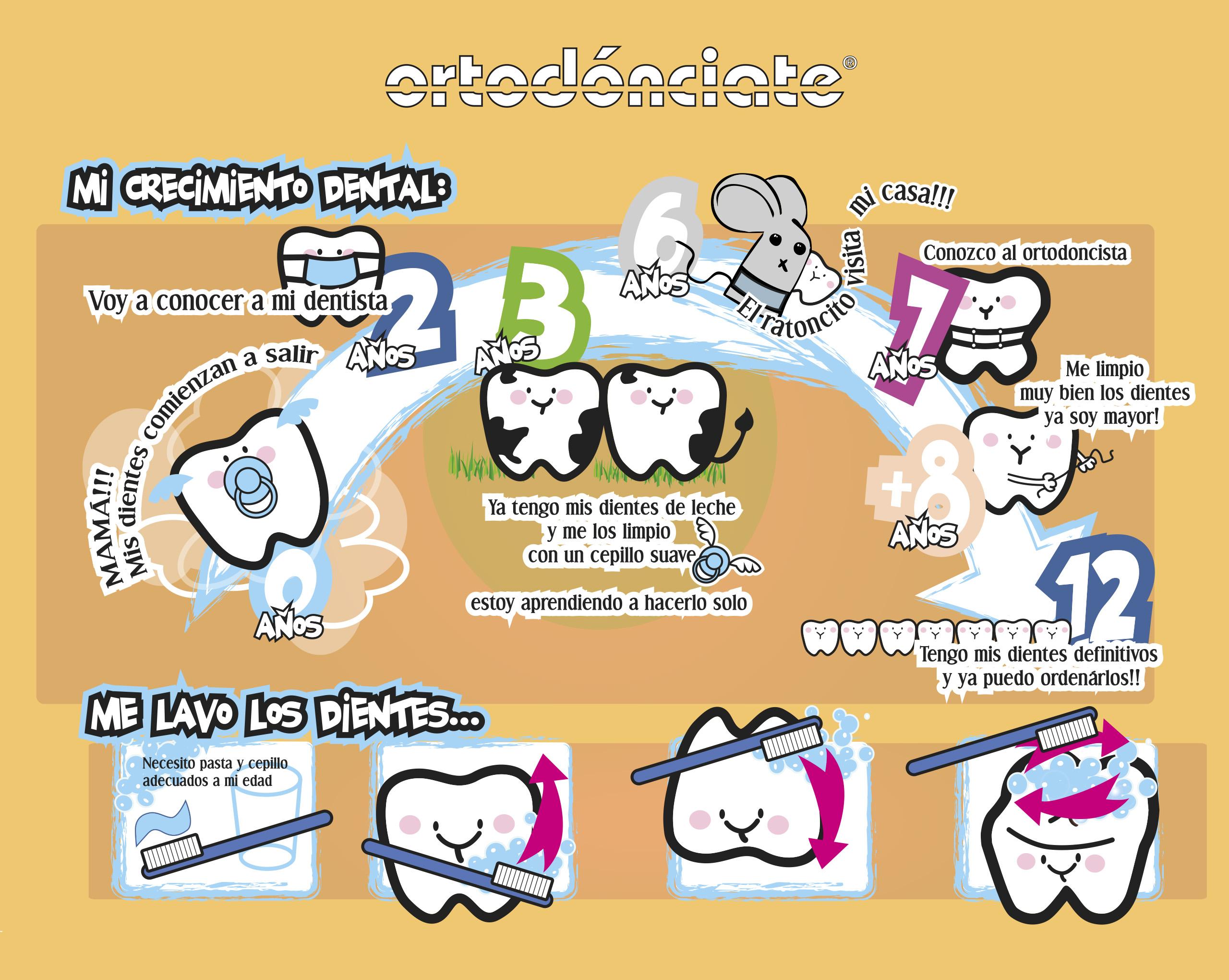 Ortodoncia infantil - Clínica Dental Rehberger-López Fanjul