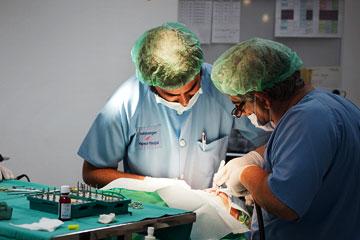 Federico Guillermo clínica Rehberger López-Fanjul